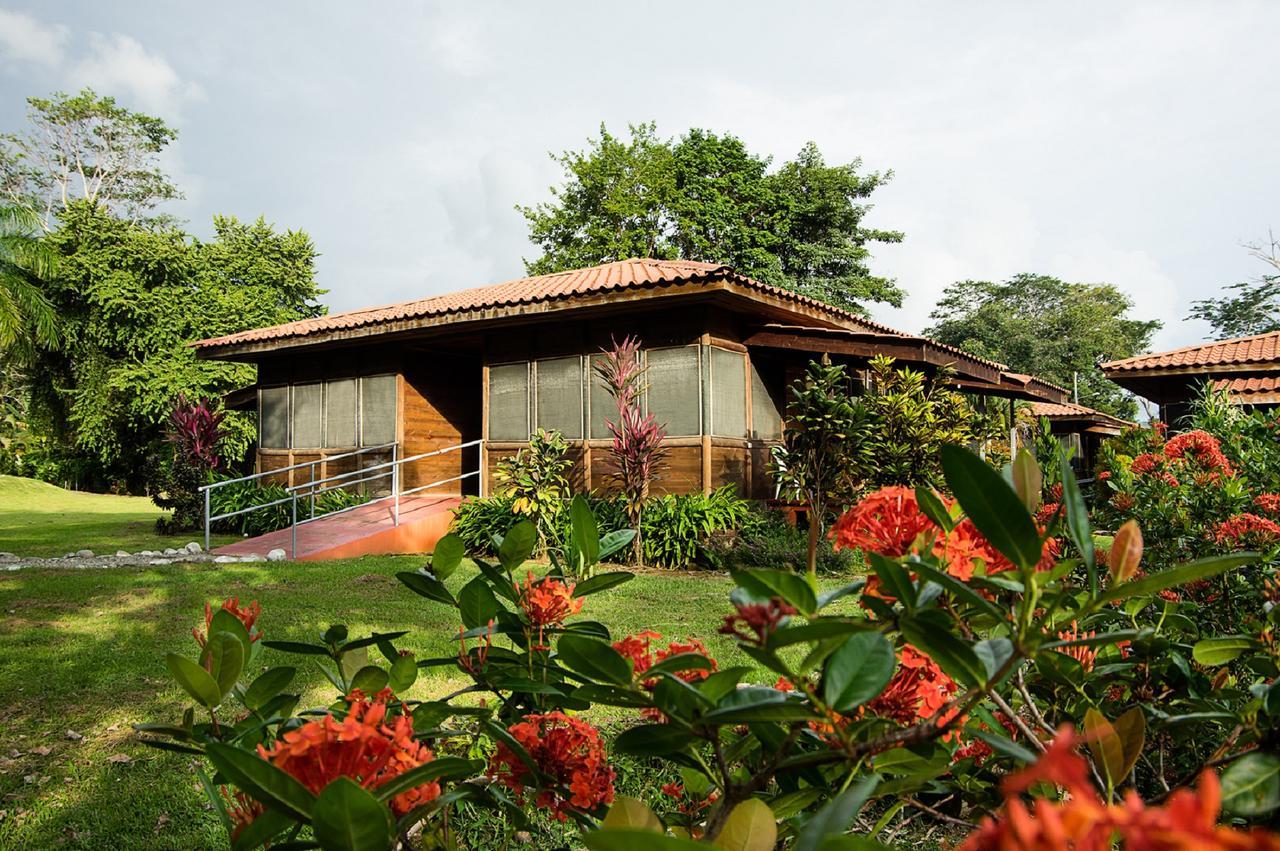 hotel-canto-de-ballenas_15248537831.jpg