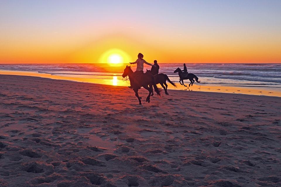 horses on beach.jpg