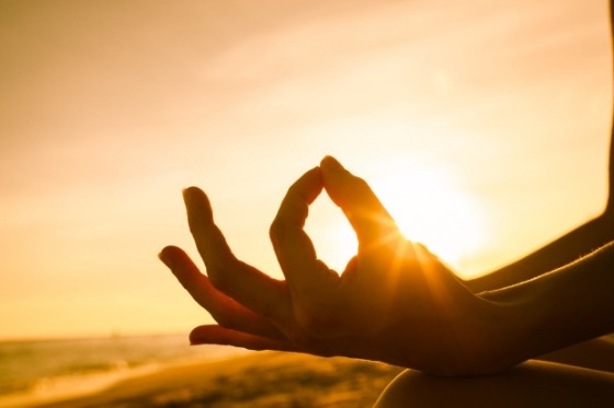 wake up with Yoga - Wake up with yoga and pranayama every morning overlooking the mountains and gardens