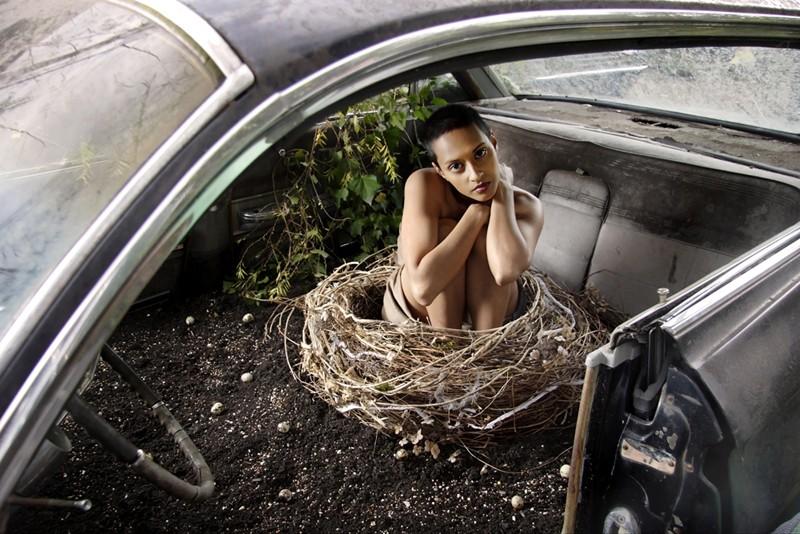 nest-800x534.jpg