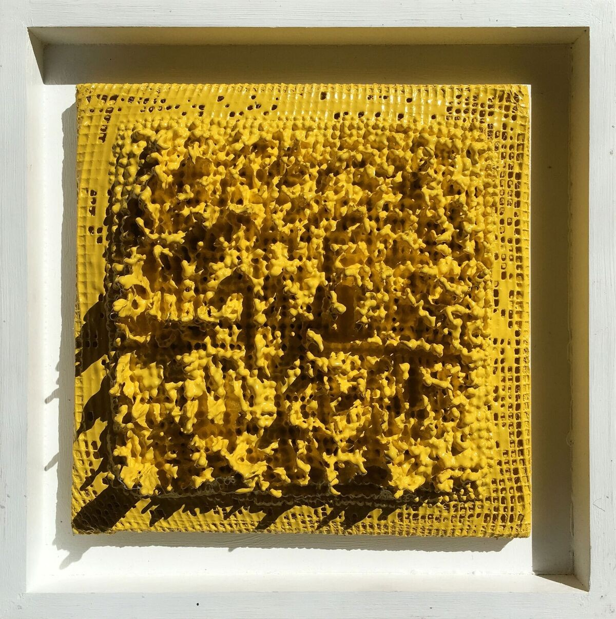Yellow Trapo
