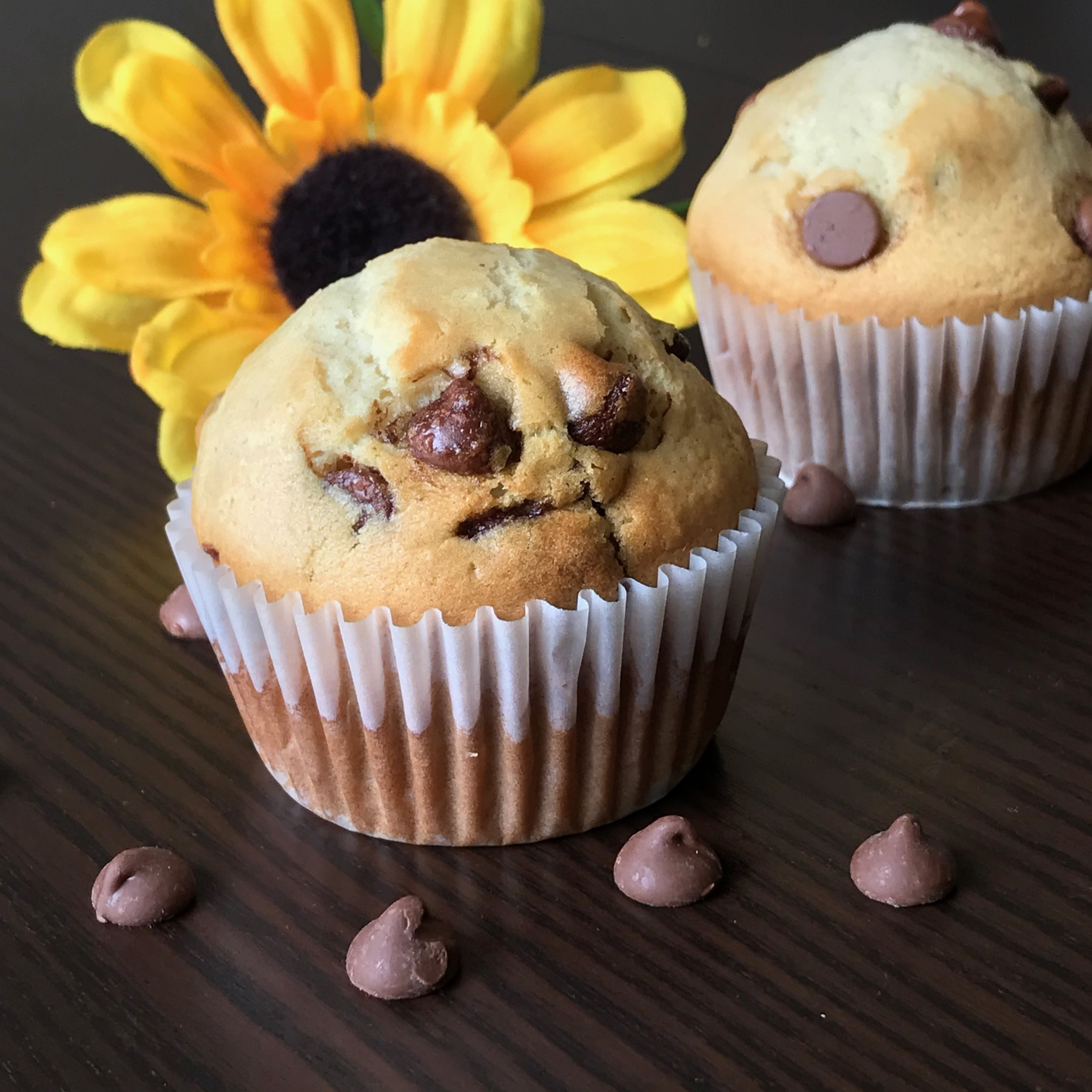 DJ's Super Delicious Chocolate Chip Muffins