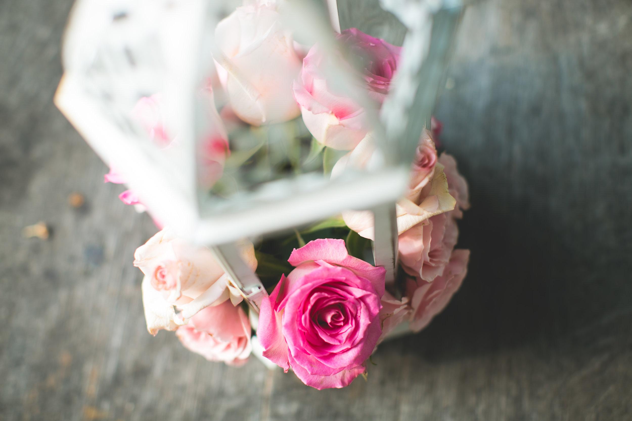 karina_asresh_wedding-0146.jpg