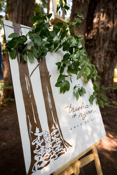Trisha_Ryan_Wedding-507-L.jpg