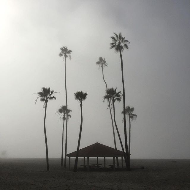 Foggy day 🌴#oceanside #beach #california #surf #trip