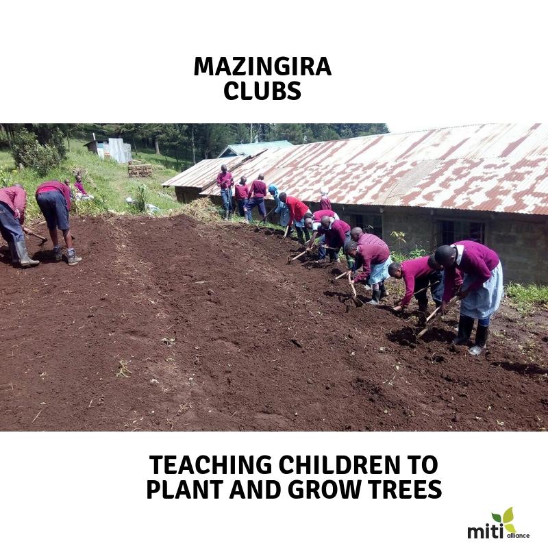 Mazingira Clubs - Teaching on how to setup a tree nursery and sustaining it.