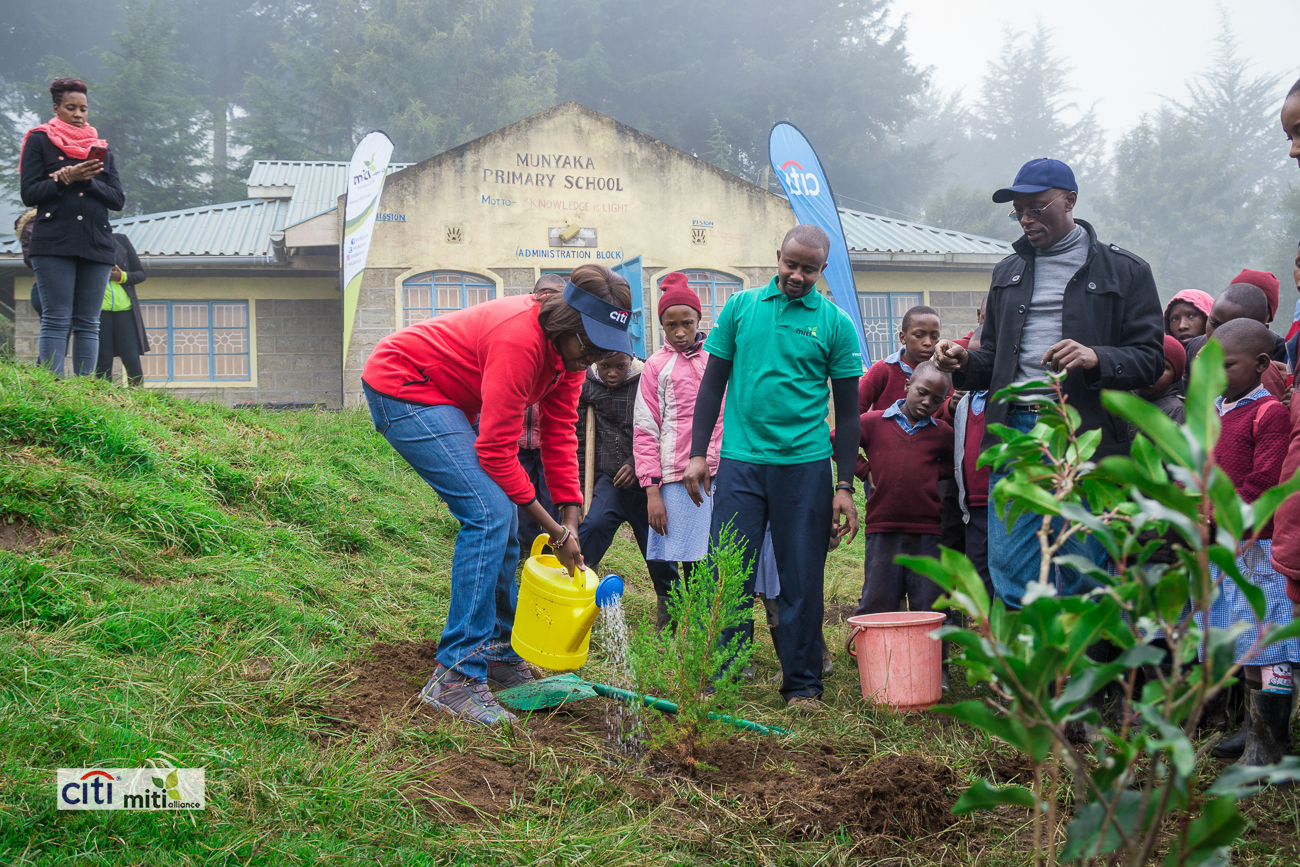Munyaka Primary - Tree Nursery and Tree PlantingDonated: Gardening implements, Water Tank, tree seeds, water pump and piping work.Supported by Citi N.A Kenya during #GCD2018