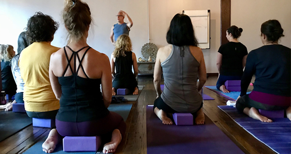 Viva Prana_Yoga_Bowspring_Wellness_Chicago_What_We_Offer_Workshops_Events_and_Retreats.jpg