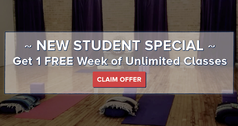 Viva Prana_Yoga_Bowspring_Wellness_Chicago_New Student Special.jpg