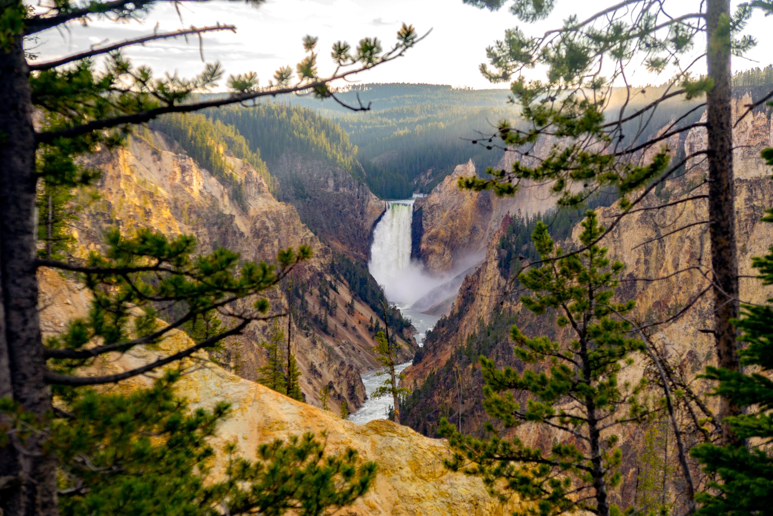 DSC03247_YellowstoneFalls.png