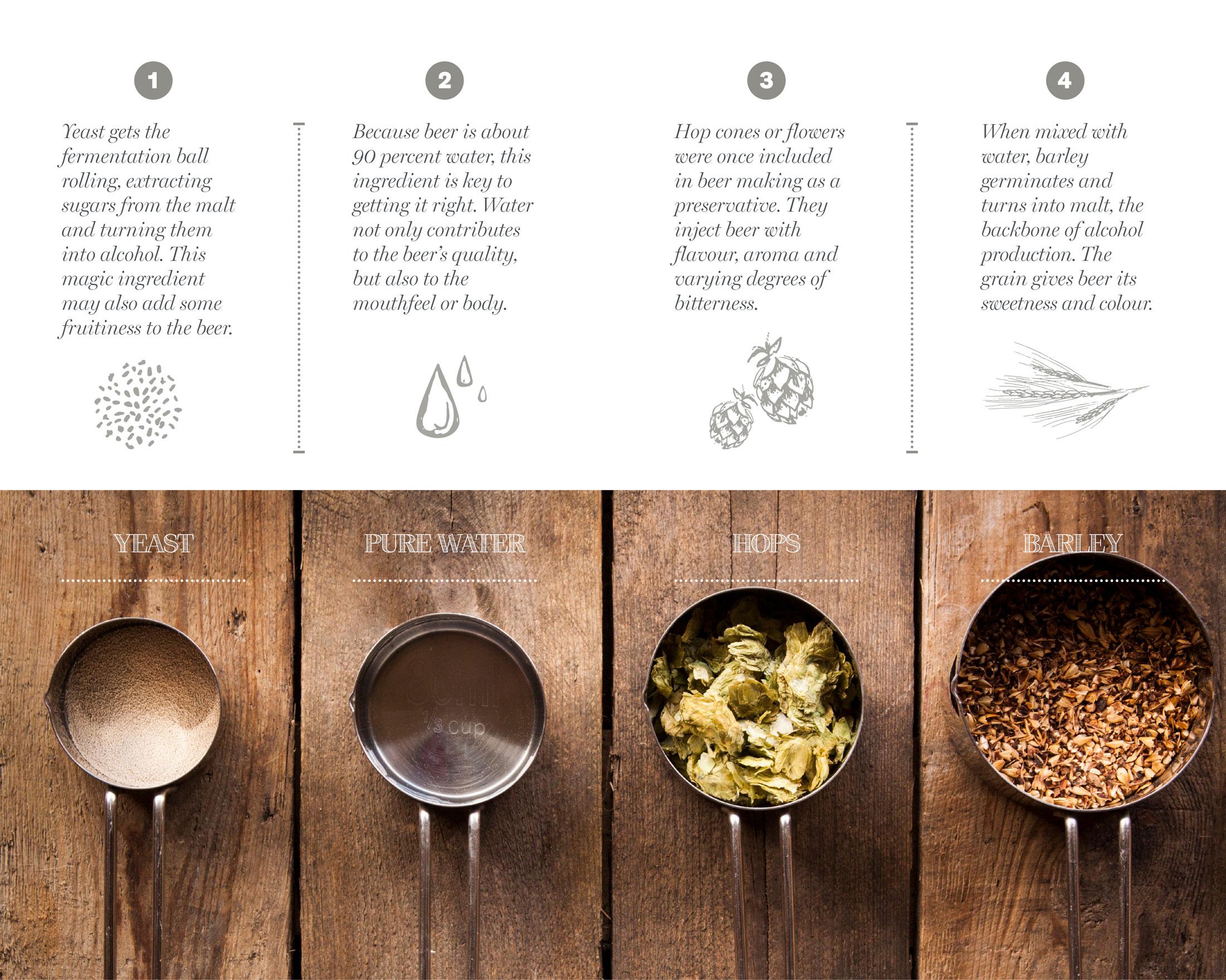 lcbo-beer-craft-beer-guide-inside-spread-sputnik-design-partners-toronto.jpg