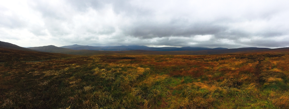 The open fields of wicklow mountains national park.
