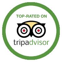 TripAdvisor_Badge_Loyton copy.png