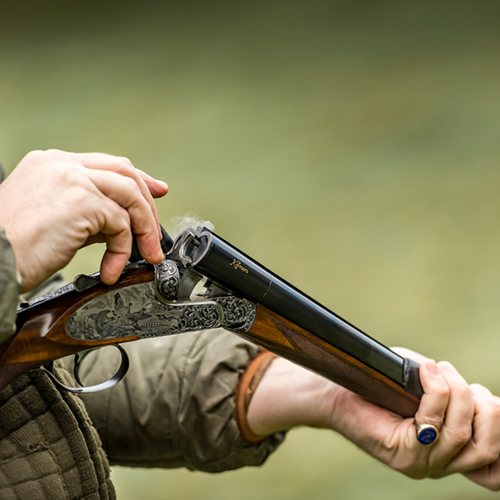 Molland Exmoor Devon shooting