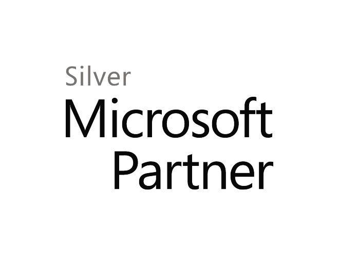 MS silver partner 2line.png