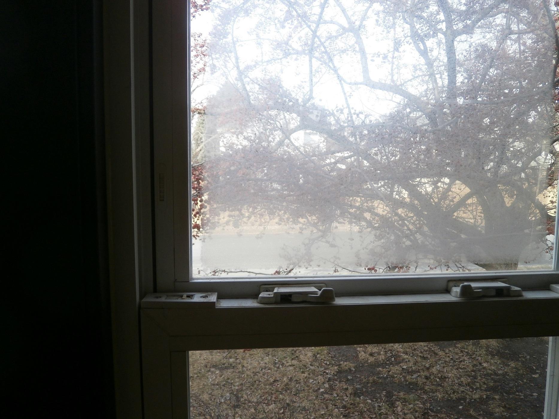 Window Fog