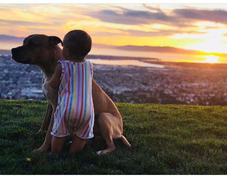 Tyler Marie Livingston and dog.jpg