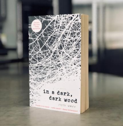 In a Dark, Dark world book review