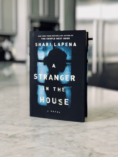 A stranger in the house book review