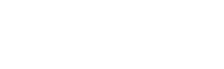 room13logohome.png