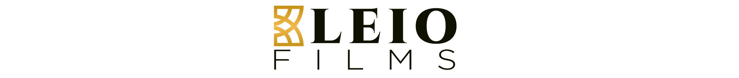 Kleio Logo Horizontal2long.jpg