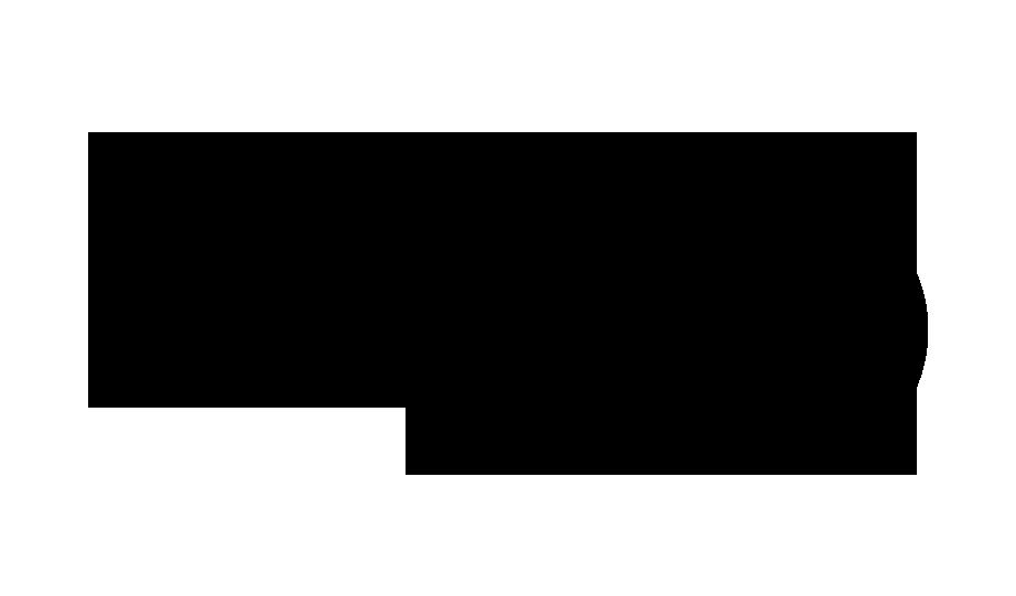 DSV-logo.png