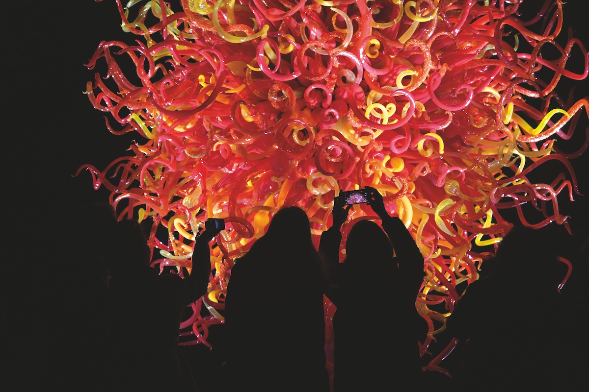 Chihuly Nights - 15 August - 26 October, £18 (£12 member)Kew Gardens, KewKew Gardens hosts an after-dark experience with illuminated artworks, food and drink, and music commissioned by Guest Artists based on a new work by Nico Muhly, featuring wind instruments and vocals. The soundscape changes each evening and includes a rotating line-up of musicians, including improvising quartet The Hermes Experiment, organist James McVinnie and the UK's only glass harmonica player Alasdair Malloy.P.S. Take a torch! 🔦