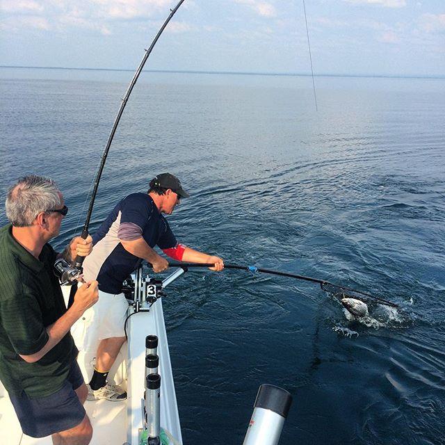 Hook on #selkirklight #fishing #ontariofishing