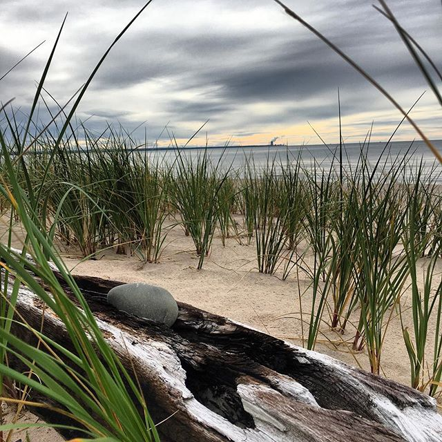 Weathered beaches #selkirklight #lighthouse #salmonriver #lakeontario