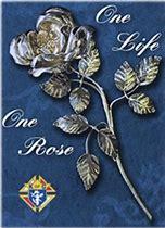 Silver Rose One Life.jpg