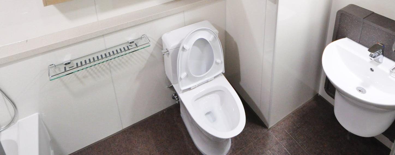 Blocked toilets - Plumbit UK