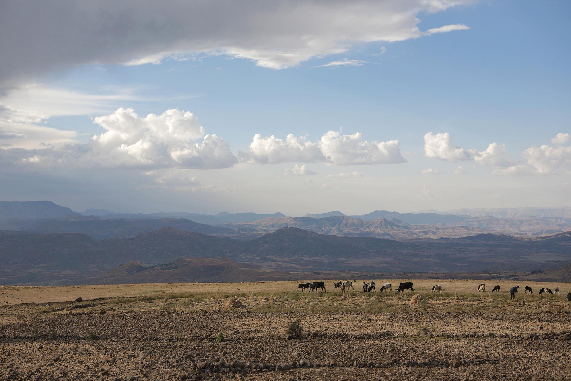 landschappen-014.jpg