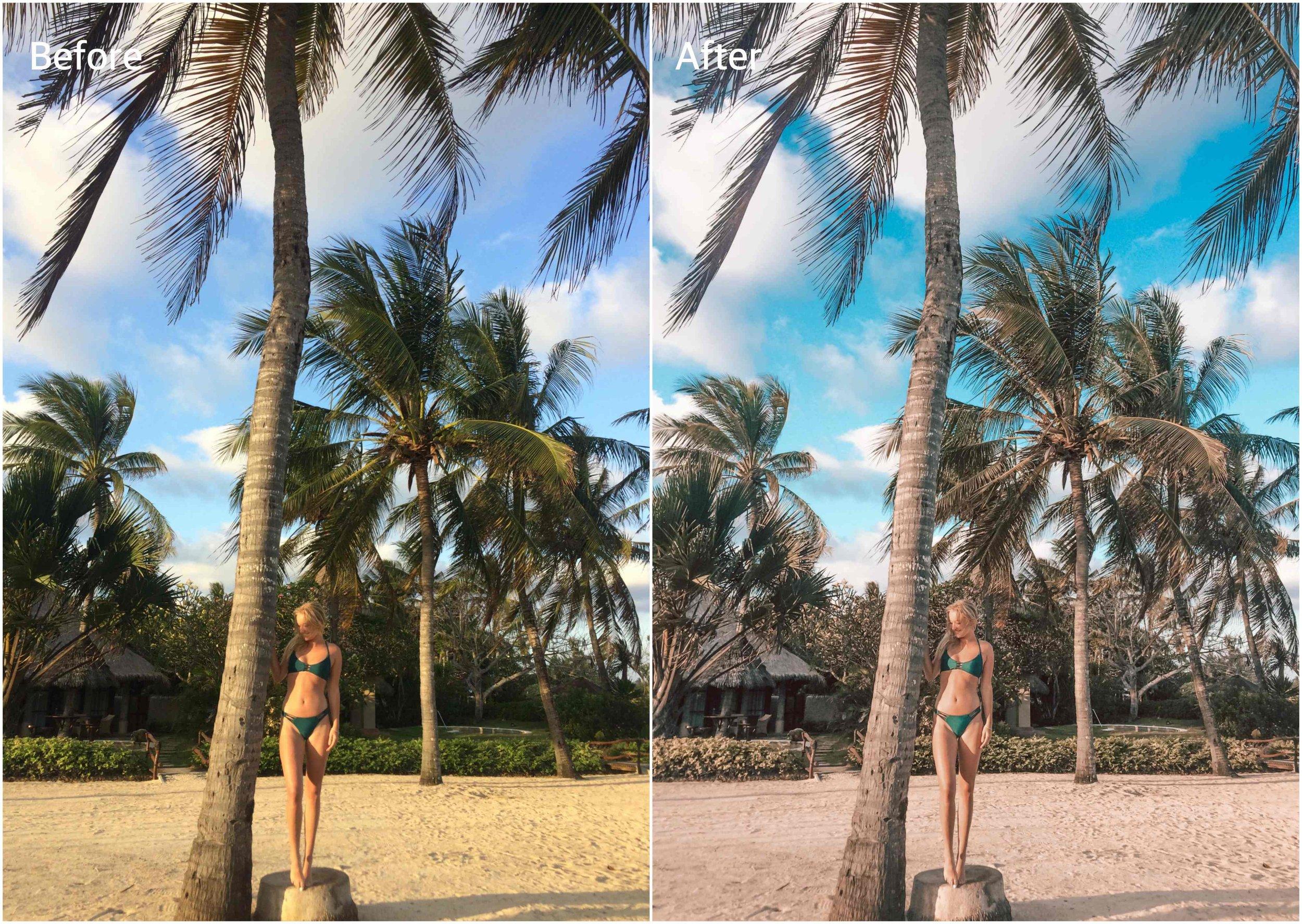 jolie janine presets before and after original.jpg