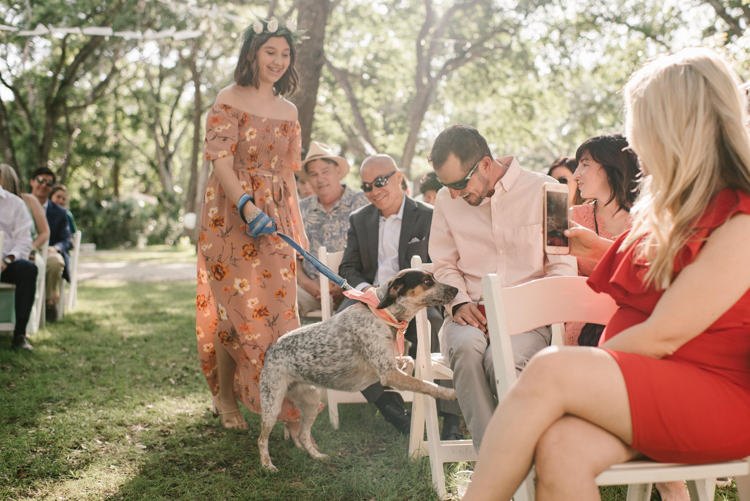 mclaughlin-wedding-433.jpg