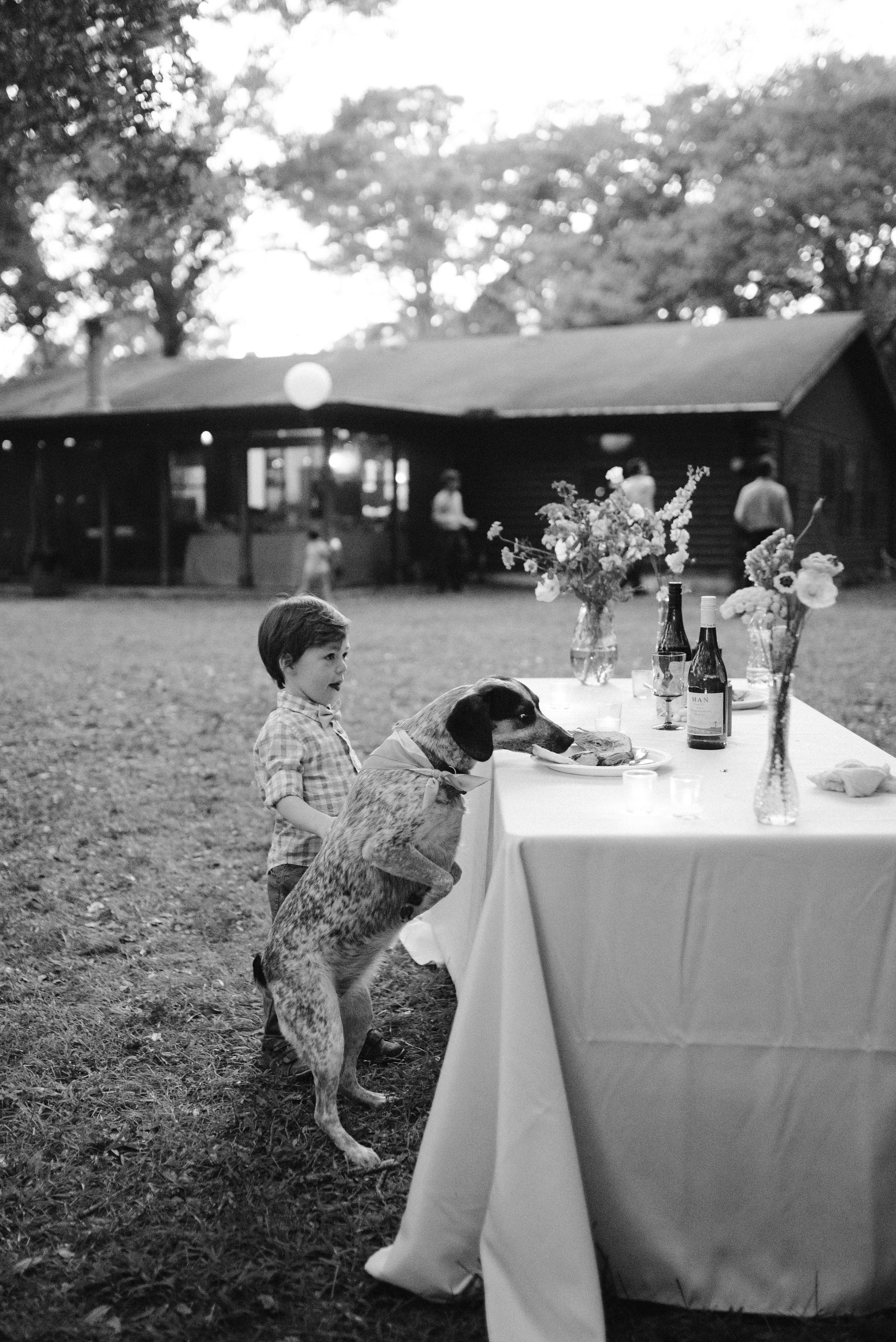 mclaughlin-wedding-1004.jpg
