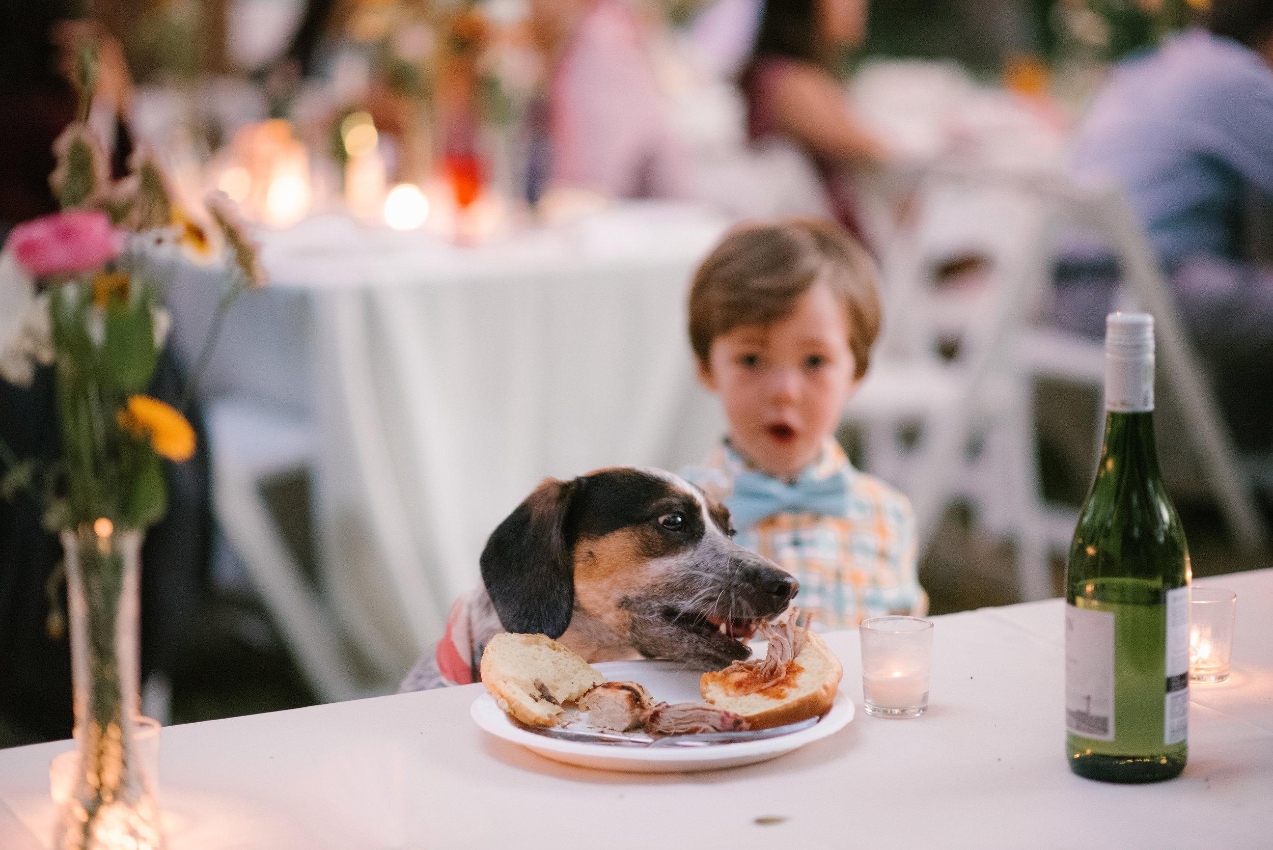 mclaughlin-wedding-1001.jpg