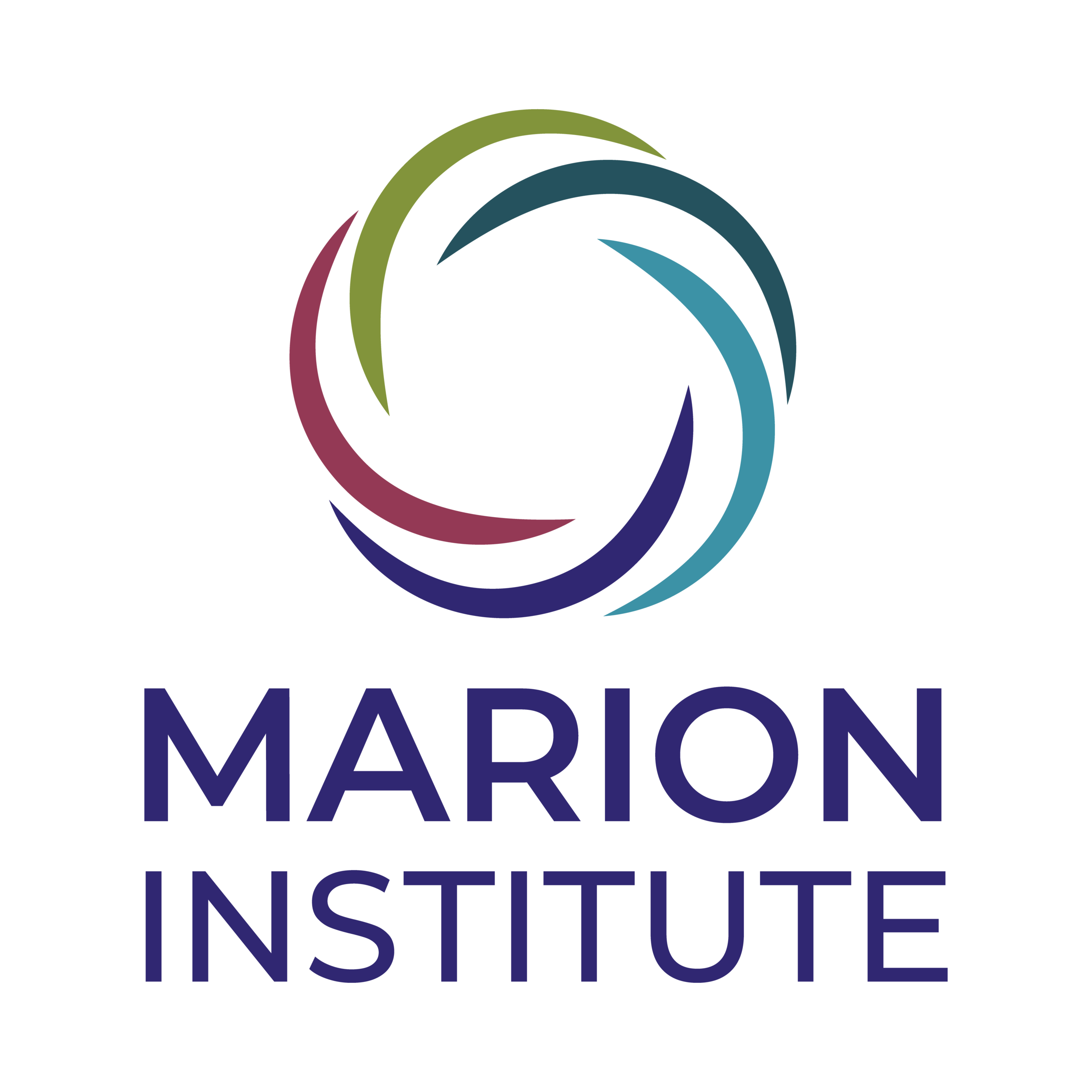 Marion Institute New Logo.png