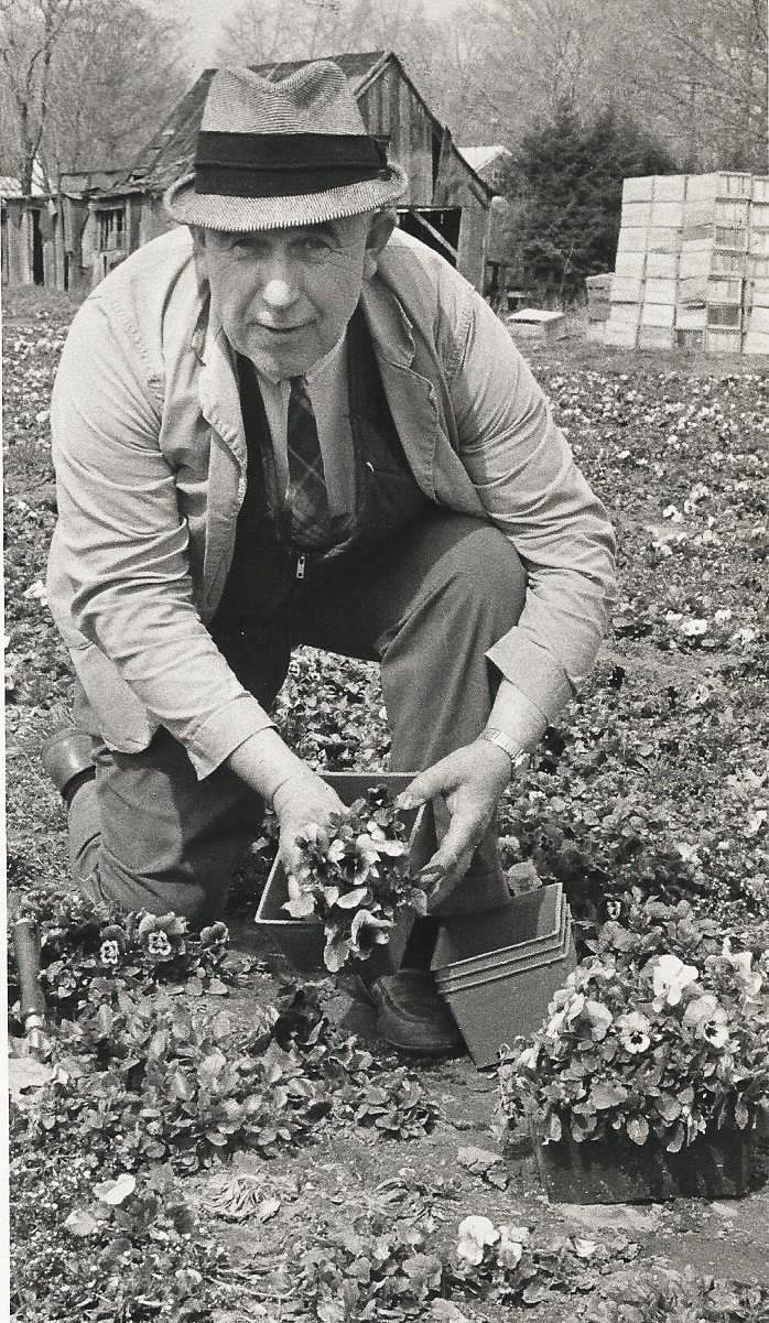 John digging up pansies.jpg