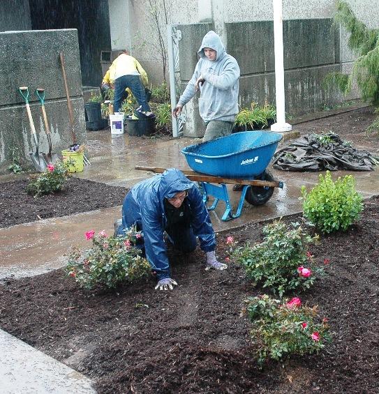 mcc planting 011.JPG