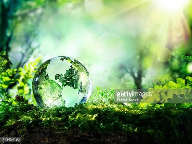 .green - .ya.see.mai.green.ENV