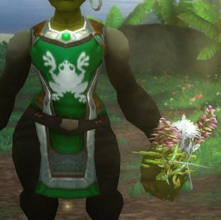Herb Vendor -