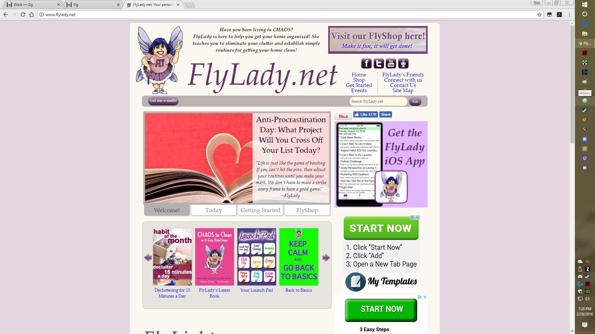 Fly Lady -