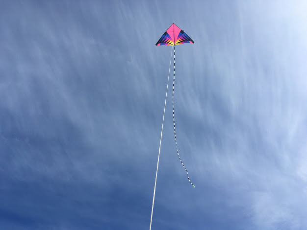 Sweet 16 Delta - Kite by Into the Wind, 75ft transition tail by Prism Kites