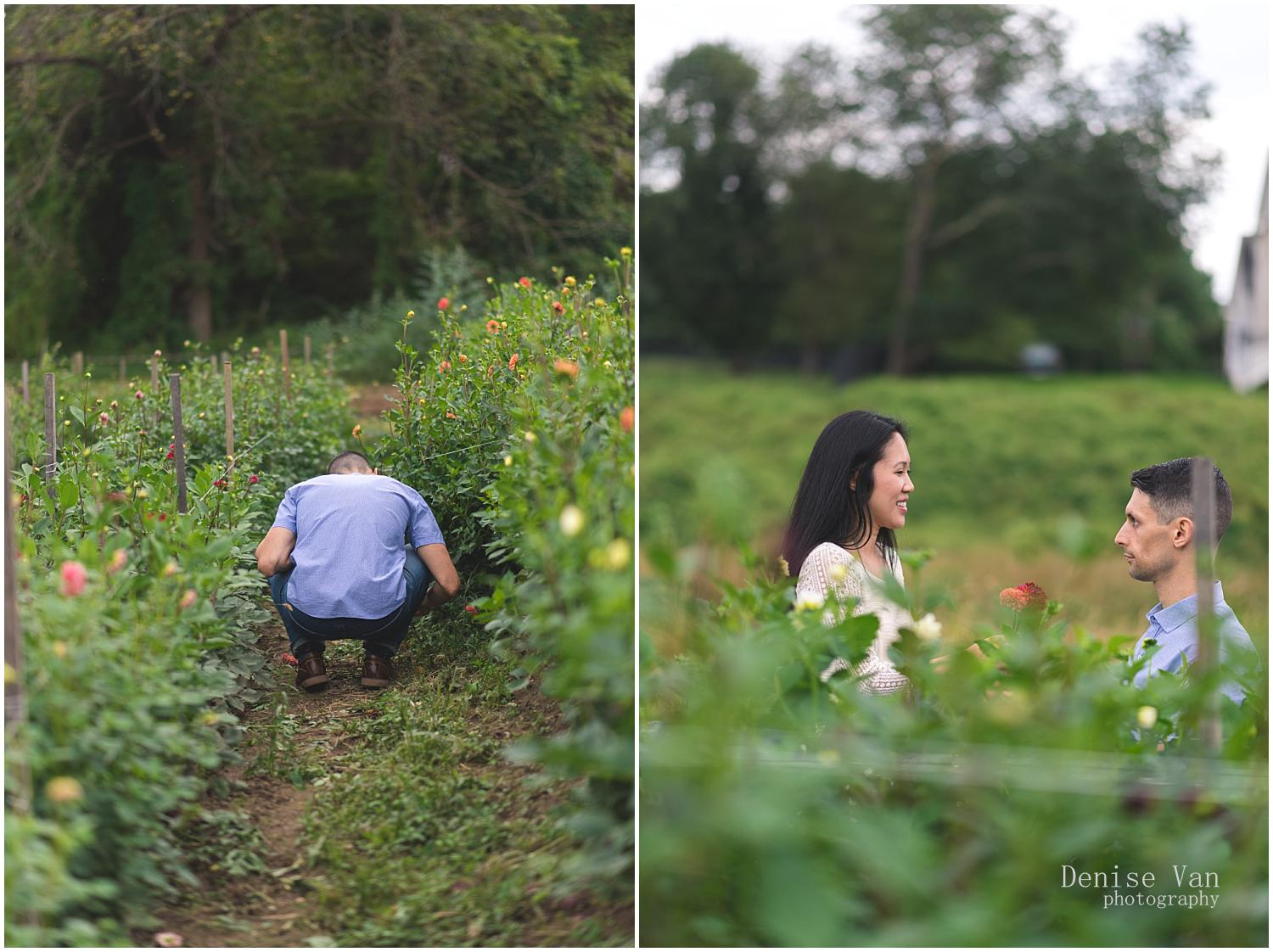 denise-van-engagement-butterbee-farm-maryland_0024.jpg