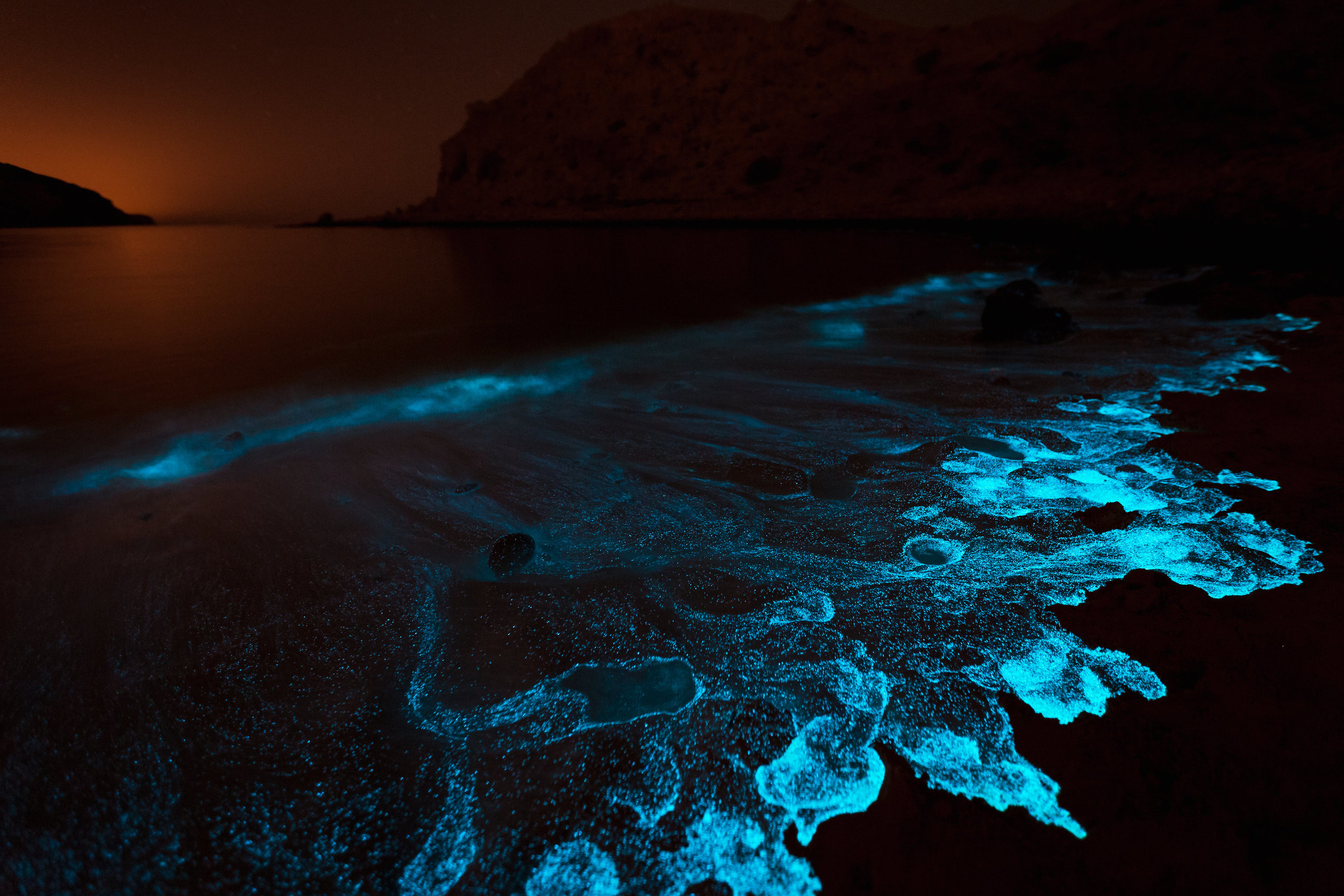 Bioluminescent algae glows after fresh spring rains, off the coast of Sifat Al Sheikh.