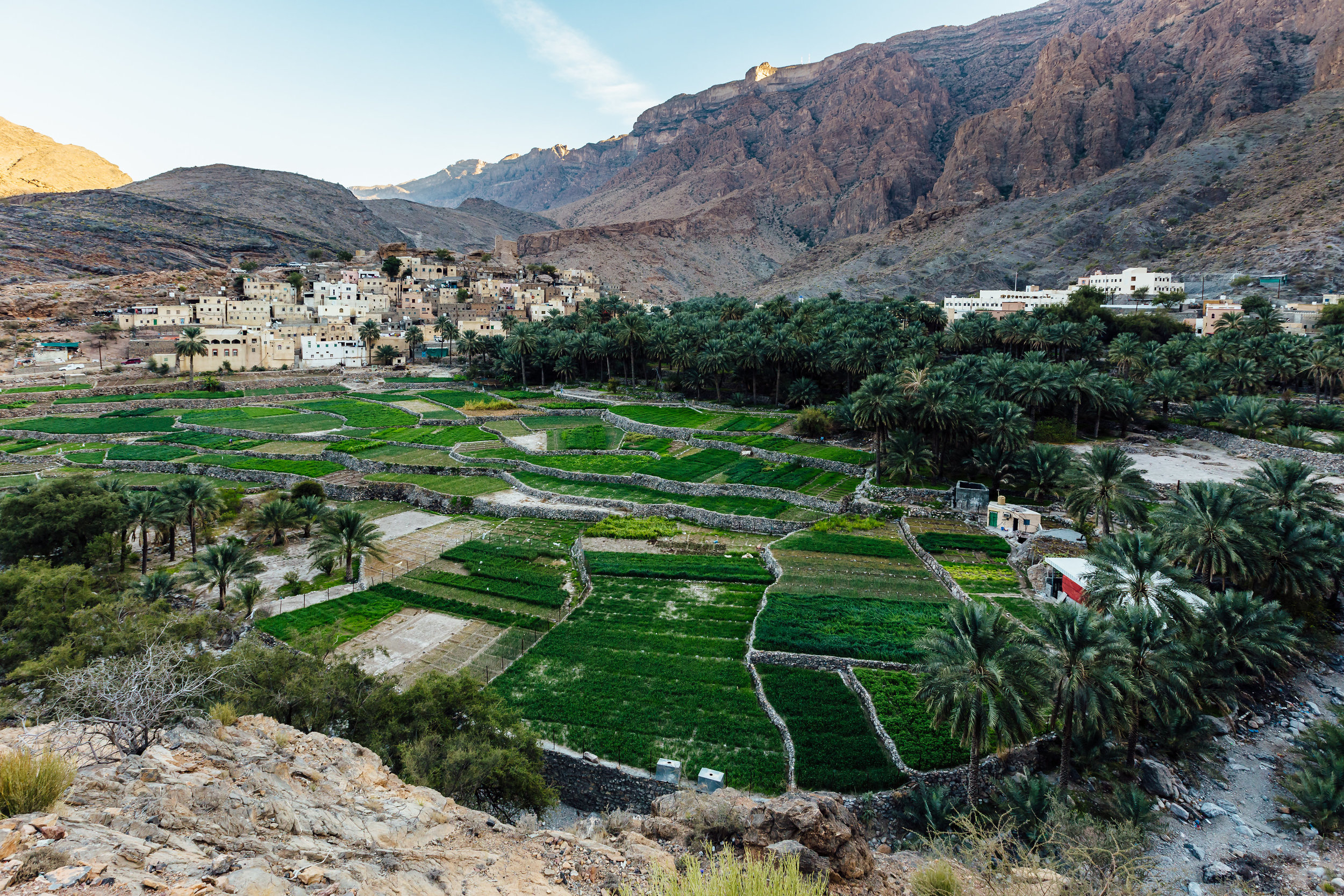 The village of Bilad Sayt sits in the shadow of the Hajar mountains, brimming with crops.