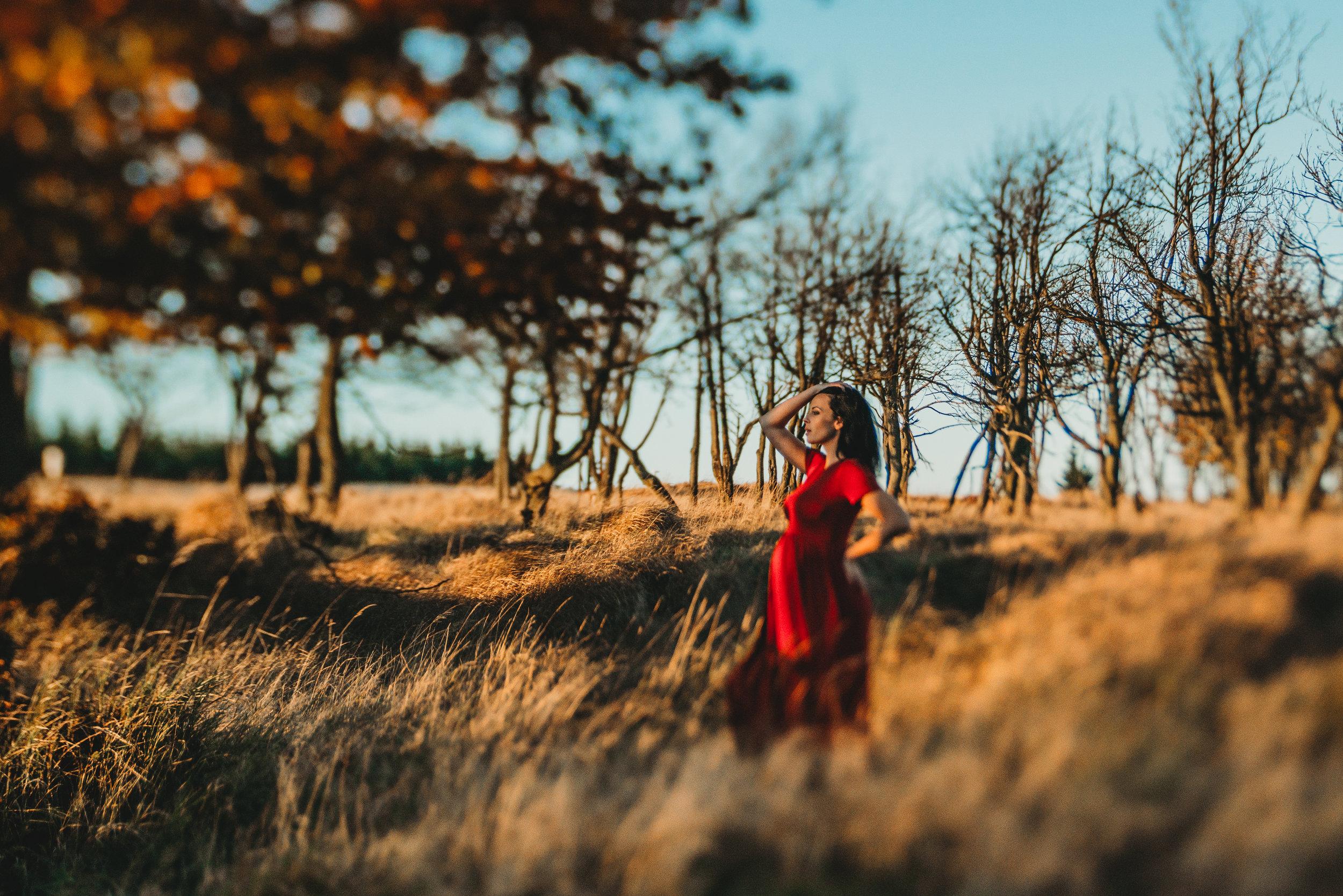 Rodinný fotograf PRaha/Krušné Hory  Podzimní těhotenské focení