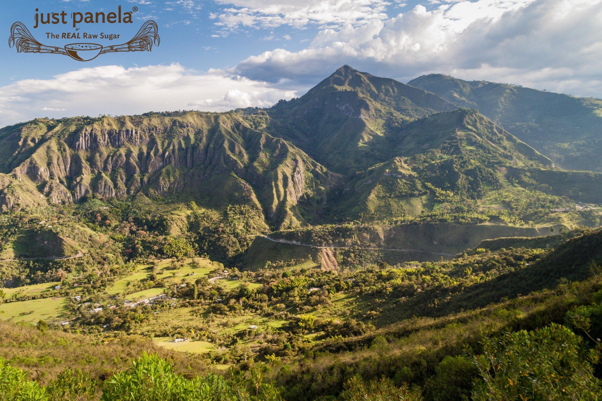 Branded Valle de Cauca.jpg