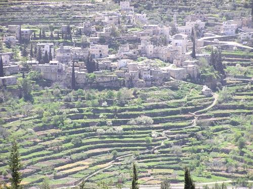 Battir and surrounding farmland