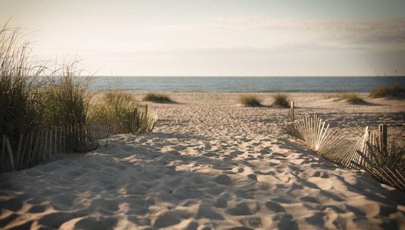 beach-photo.jpg